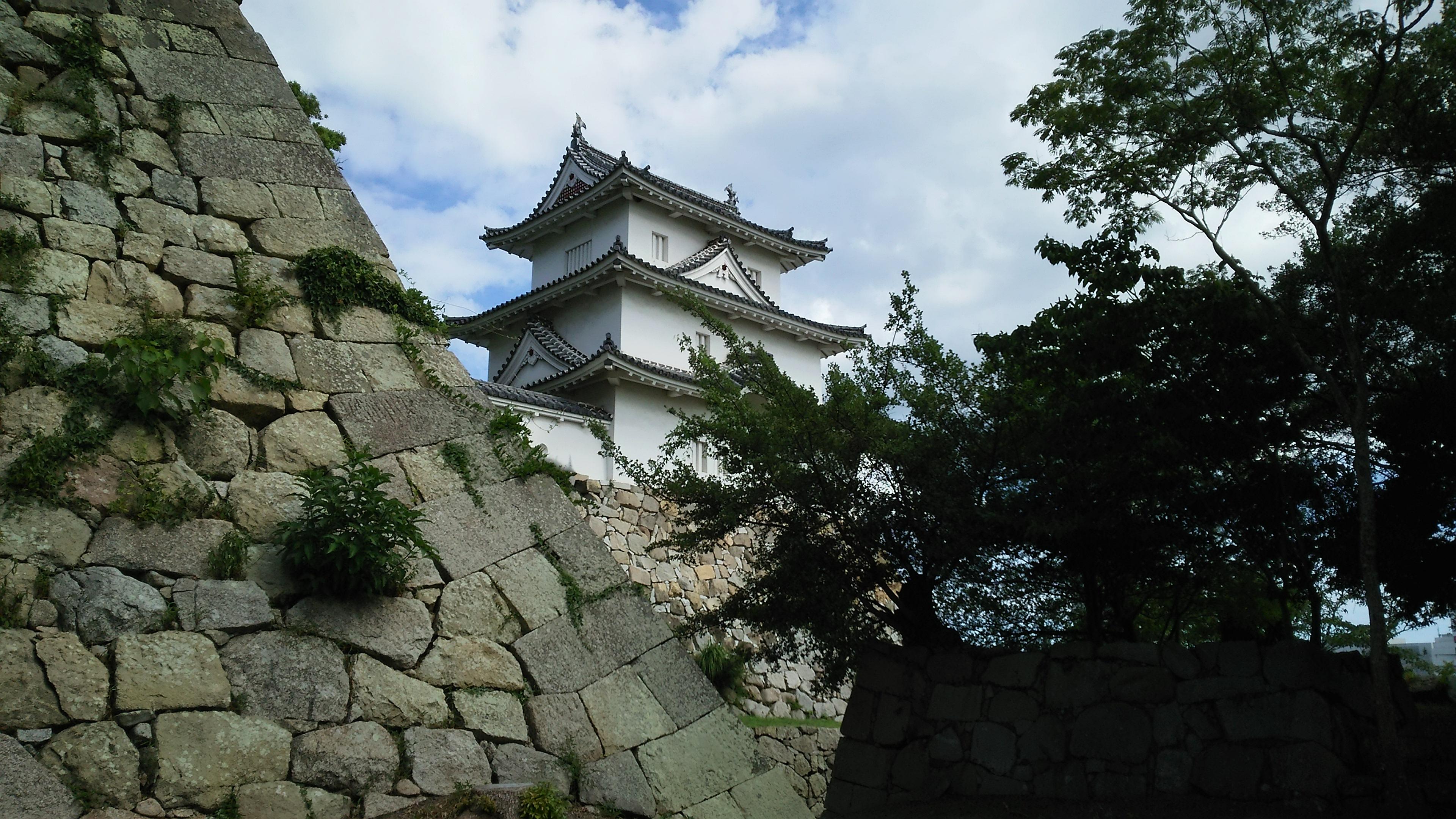 富田林,大阪狭山市でお住まいでお城周りをしたい方は足腰の不安を解消してから楽しみましょう!