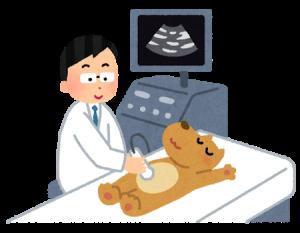 富田林,大阪狭山 金剛駅近くで靱帯のエコー検査ができるくめ鍼灸整骨院