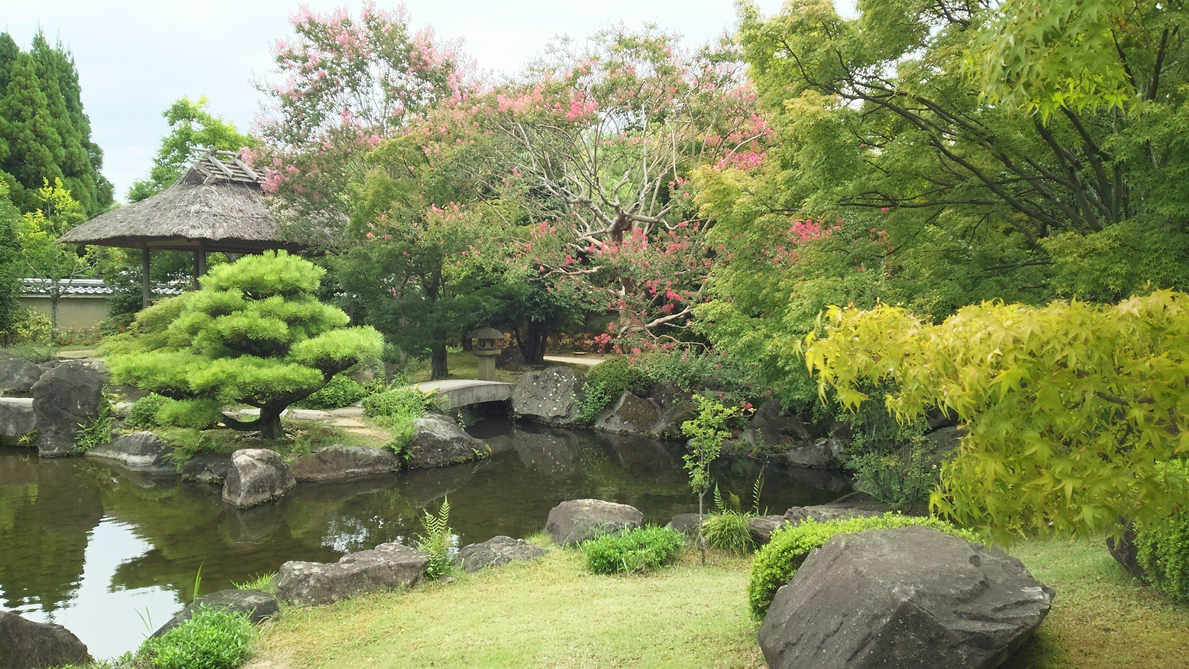 富田林,大阪狭山市にお住まいで旅行で事故の痛みで悩んでいる方はくめ鍼灸整骨院へ