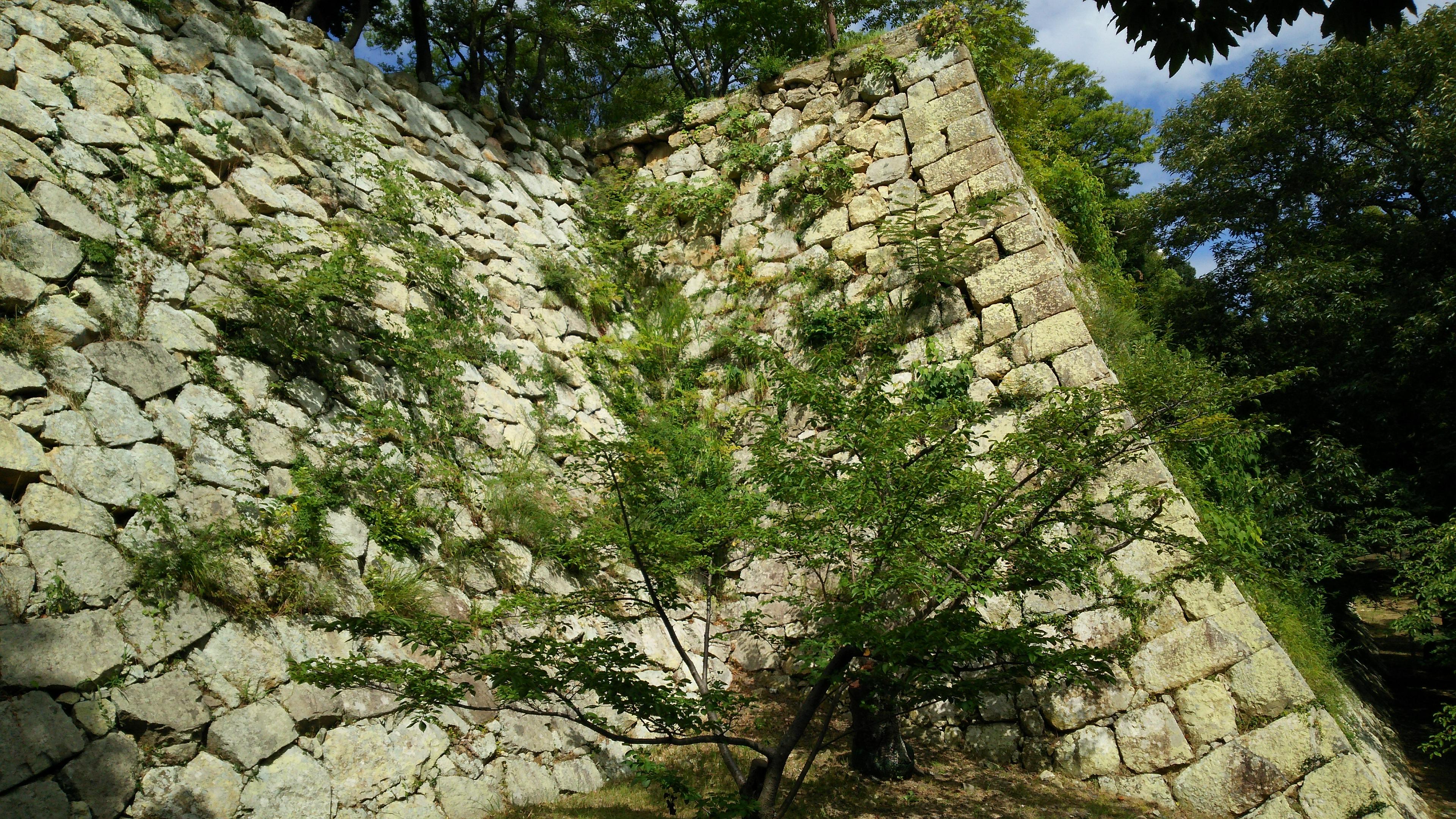富田林,大阪狭山市で旅行に楽しく行きたいならくめ鍼灸整骨院へご相談ください♪